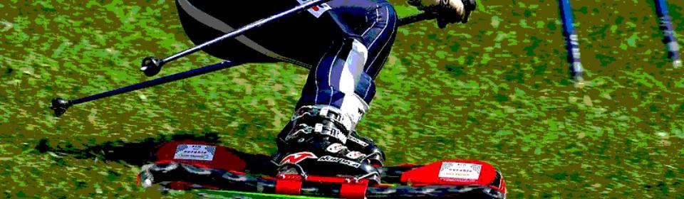"""Sci d'erba: i risultati degli azzurrini nella tappa elvetica della """"FIS Children Cup"""""""